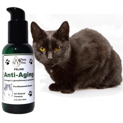 Feline Anti-Aging